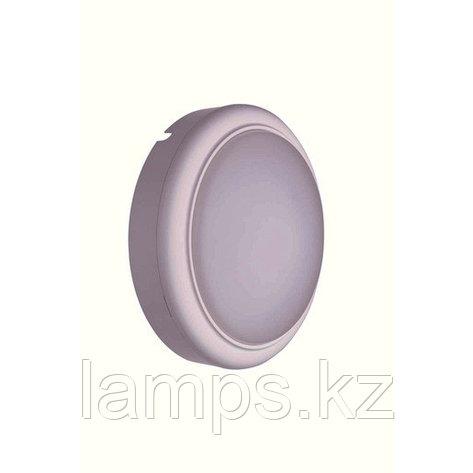 WL008C LED10/NW round Настенный светильник без датчика (Philips), фото 2