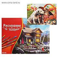 Картина по номерам 30×40 см в коробке, 17 цветов «Щеночек и котёнок на пикнике»
