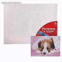 Картина по номерам 30×40 см в плёнке «Щенок в одеяле»