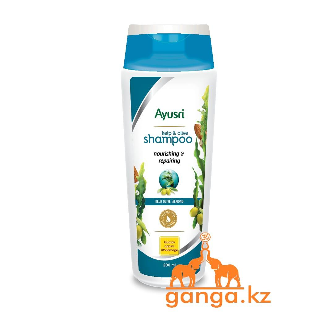 Шампунь с ламинарией, оливкой и миндалем (Nourishing and repairing shampoo AYUSRI), 200 мл.