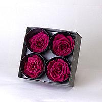 Бутоны роз стабилизированные
