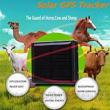 RF-V26 Gps трекер на солнечной батареи, фото 3