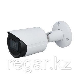 Цилиндрическая видеокамера Dahua DH-IPC-HFW2431SP-S-0280B