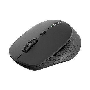 Компьютерная мышь Rapoo M300 Black