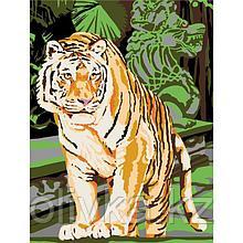Картина по номерам «Бенгальский тигр», на холсте с подрамником, 30 × 40 см