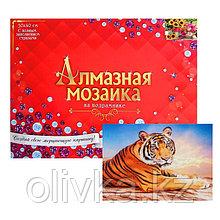 Алмазная мозаика с полным заполнением, 30 × 40 см «Тигр на закате»