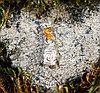 Брелок-талисман  Будда, натуральный янтарь, посеребрение