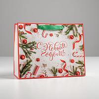Пакет ламинированный горизонтальный «Атрибуты праздника», MS 23 × 18 × 10 см