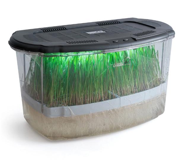 Микроферма Dream Sprouter - проращиватель с подсветкой и таймером