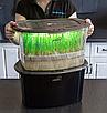 Микроферма Dream Sprouter - проращиватель с подсветкой и таймером, фото 5