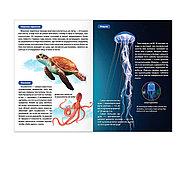 Мини-энциклопедии набор «Мир животных», 6 шт. по 20 стр., фото 4