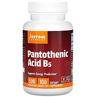 Jarrow Formulas, пантотеновая кислота (витамин B5), 500 мг, 100 вегетарианских капсул