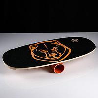 """Доска балансировочная балансборд """"Медведь"""" D ролика 9 см, 75×35х1,5 см"""