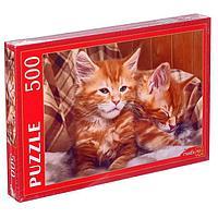 Пазлы 500 элементов «Рыжие котята Мейн-куна»