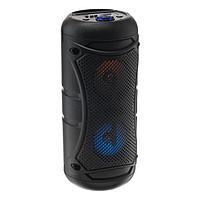 УЦЕНКА Портативная колонка BK1001, microSD/USB/FM, Bluetooth 5.0, 12 Вт, 1500 мАч, чёрная