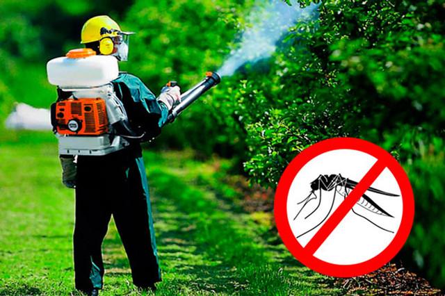 дезинфекция личинок комаров