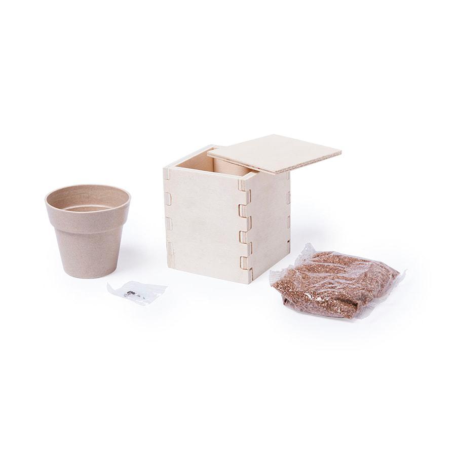 Горшочек для выращивания мяты с семенами (6-8шт) в коробке MERIN, биоразлагаемый материал, дерево, грунт