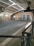 Резиновое,напольное покрытие для коров, крс,коз,лошадей., фото 5