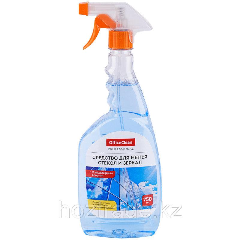 Средство для мытья стекол и зеркал OfficeClean Professional, с нашатырным спиртом, 750мл, с курком