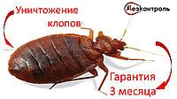 Уничтожение клопов Алматы-области