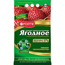 Bona Forte гранулированное пролонгированное удобрение ЯГОДНОЕ с биодоступным кремнием, 2,5кг