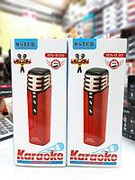 Беспроводной караоке микрофон Wster 838
