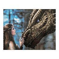 Роспись по холсту «Мать драконов» по номерам с красками по 3 мл+ кисти+инстр+крепеж, 30 × 40 см