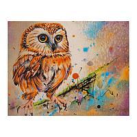 Роспись по холсту «Яркая сова» по номерам с красками по 3 мл+ кисти+инстр+крепеж, 30 × 40 см