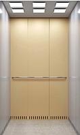 Лифт пассажирский BU Matte gold