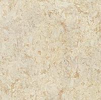 Алюминиевая композитная панель Bildex BA 0050
