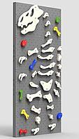 Детский скалодром Динозавр Рекс (ширина 1,2 метра) (Серый)