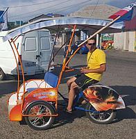 Велорикша Медведь Z1-2M электро с оклейкой