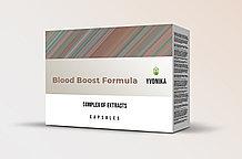 Blood Boost Formula - капсулы для нормализации давления, уровня холестерина и сахара в крови