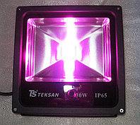 Фитолампа светодиодная для рассады и теплиц IP65 ФП-30