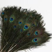 Эко-декор перья павлина 'Мечтай', 25 см, 100 шт