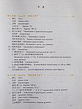 Новый практический курс китайского языка. Учебник. Том 2, фото 2