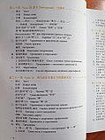 Новый практический курс китайского языка. Учебник. Том 2, фото 5