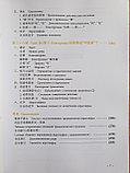 Новый практический курс китайского языка. Учебник. Том 2, фото 8