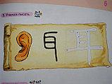 Царство китайского языка. Учебник 1А, фото 8