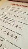 Самоучитель по китайской каллиграфии: пишем легко и изящно стилем синшу, фото 7
