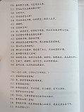 Developing Chinese. Разговорная речь. Средний уровень. Часть 1, фото 8