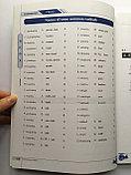Contemporary Chinese. Современный китайский язык для начинающих. Пособие по иероглифике, фото 5