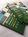 Boya Chinese. Комлект из 3-х книг. Учебник + Рабочая тетрадь + Словарик. Часть 1, фото 2