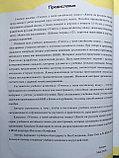 Учитесь у меня китайскому языку. Начальный этап. Учебник для школьников (на рус. языке), фото 2