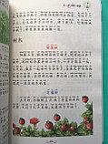 Пособие по написанию простых сочинений с минимальным словарным запасом (200-400 иероглифов)., фото 2