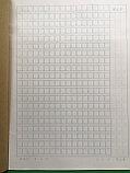 Тетрадь для написания иероглифов. Клетка 7 мм с полем для пиньинь и полем для заметок. 9520 клеток, фото 3