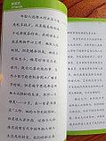 The Mysterious Beijing. Таинственный Пекин. Пособие для чтения HSK 6, фото 6