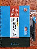 Рельефные прописи со специальной ручкой и запасными стержнями. Ускоренный курс по стилю Кайшу, фото 2