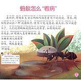 """Иллюстрированная энциклопедия """"Животный мир"""" на китайском языке для детей, фото 3"""