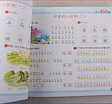Китайский язык для детей: основные грамматические конструкции и базовая лексика, фото 5